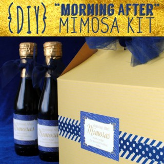 "DIY ""Morning After"" Mimosa Kit Guide"