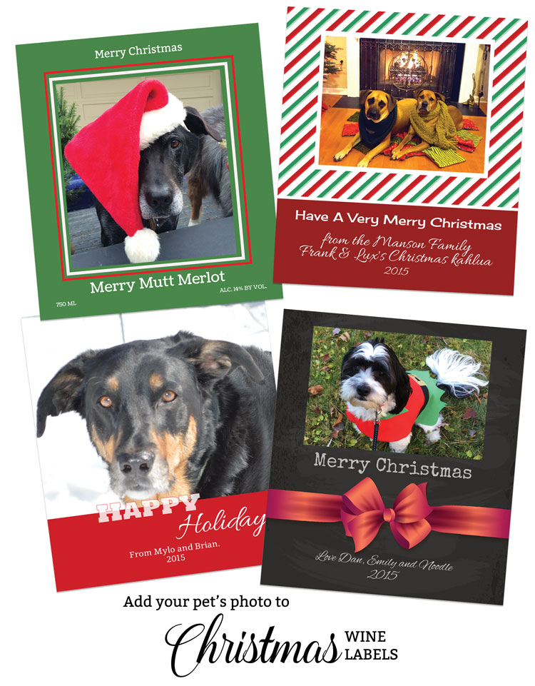 Christmas Pet Photos on Wine Labels. Put your pet's picture on a wine label or beer label.