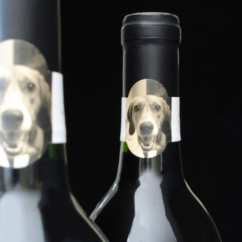 Wine bottle neck labels with photo of dog
