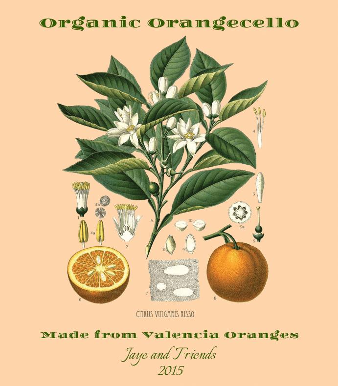 Orangecello Botanica