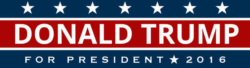 Donald Trump For President 2016 US Flag