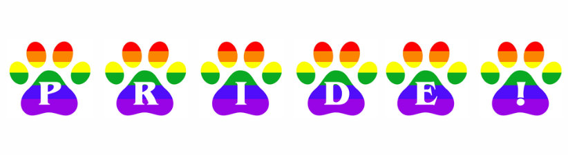 Gay Pride Rainbow Pawprints