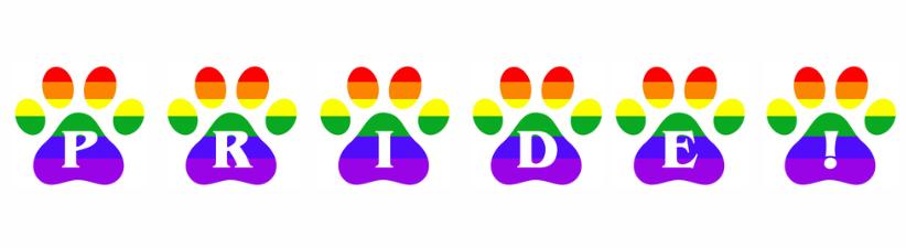 Gay Pride Rainbow Pawprints