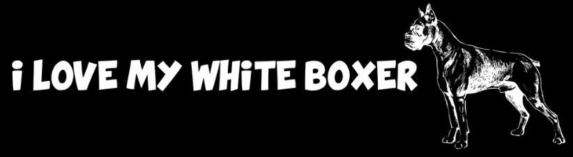 I Love My White Boxer Dog