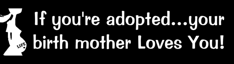 If Your Adopted Your Birth Mother Loves You