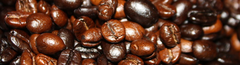 Light Dark Roast Coffee Beans Customized Blank