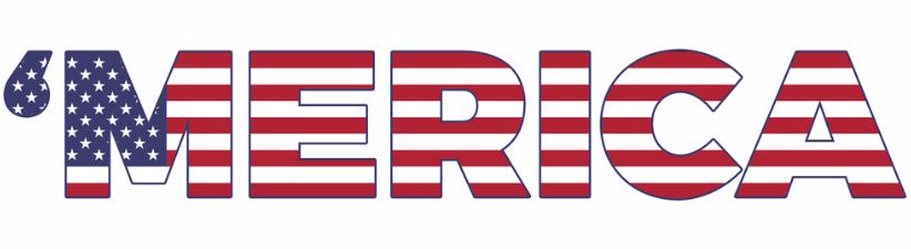 Merica US Flag
