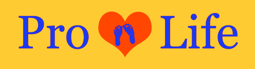 Pro Life Heart And Baby Feet