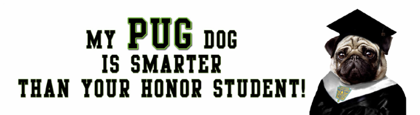 Pug Smarter Than Honor Student