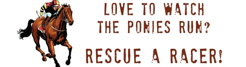Rescue Racing Horses
