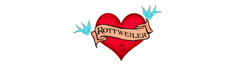 Rottweiler Tattoo Heart