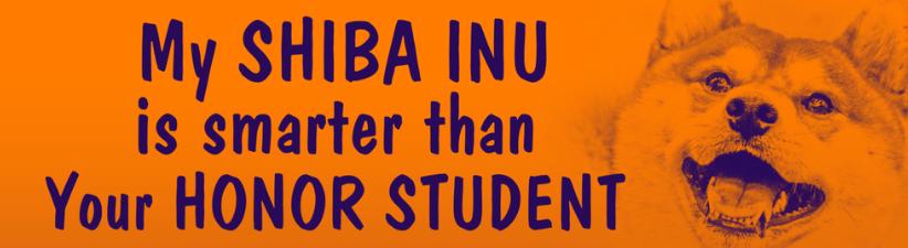 Shiba Inu Smarter Than Honor Student