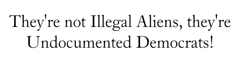 Theyre Not Illegal Aliens Theyre Undocumente