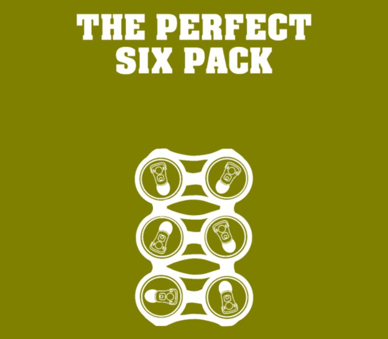 Beer Lover T The Perfect Six Pack