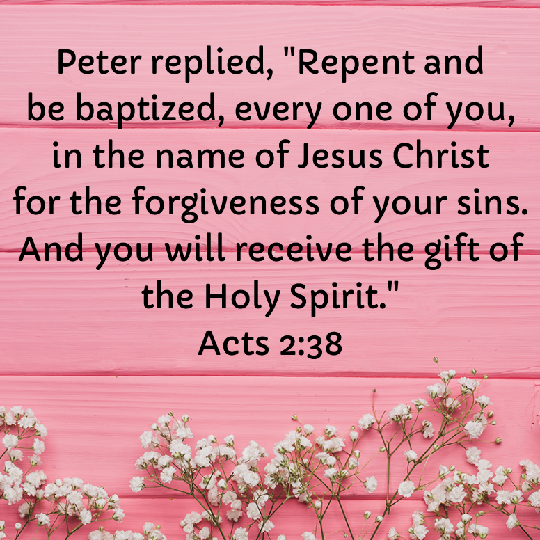 Acts 2 Peter Replied