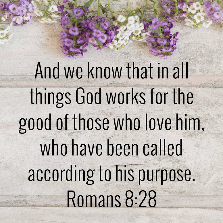 Romans 8 And We Know That In All Things