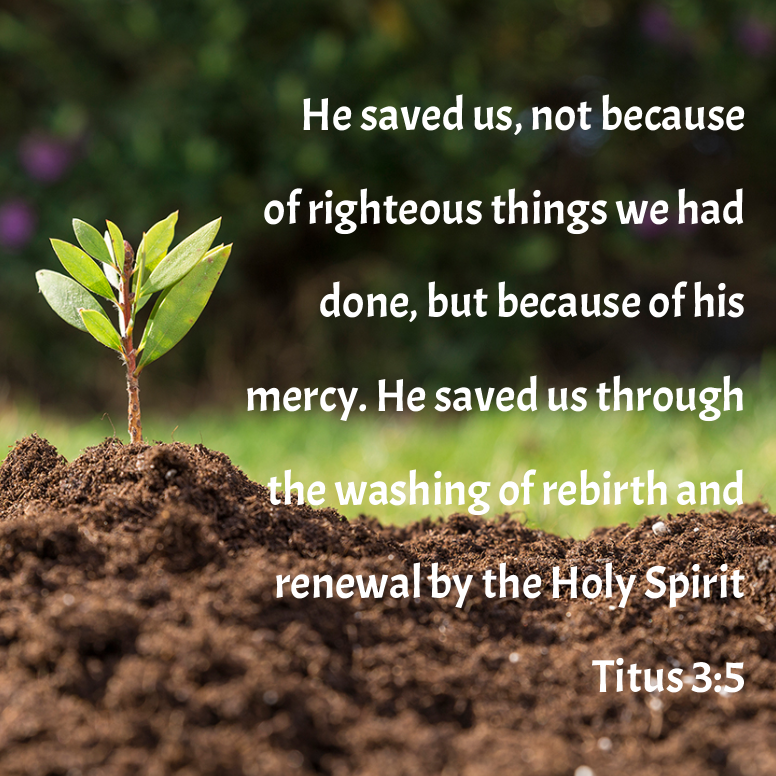 Titus 3 He Saved Us Not Because Of