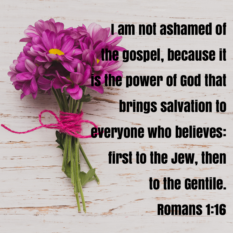 Romans 1 I Am Not Ashamed Of The Gospel