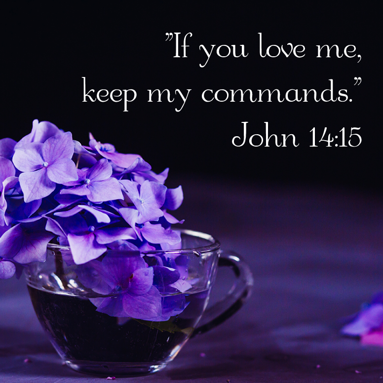 John 14 If You Love Me