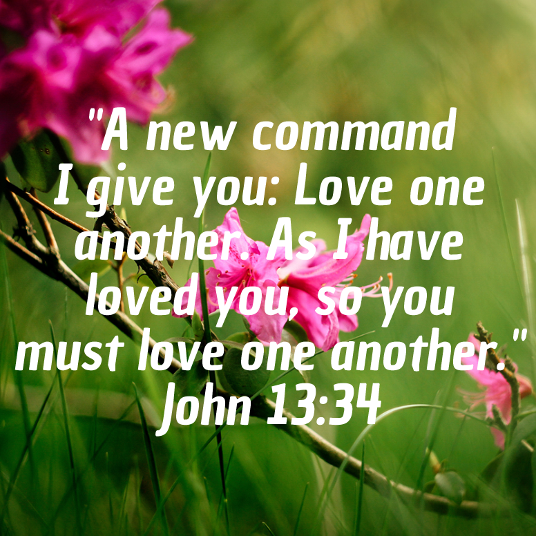 John 13 A New Command I Give You