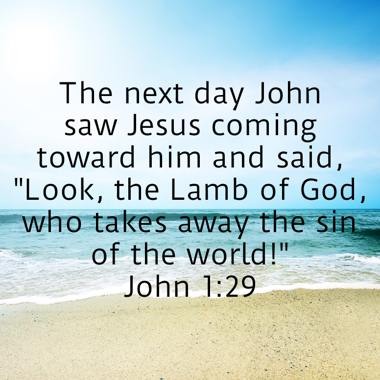 John 1 The Next Day John Saw