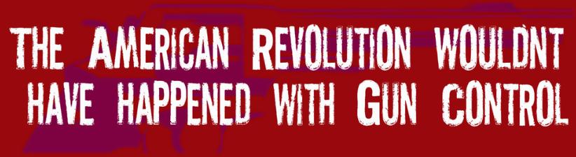 American Revolution Gun Control