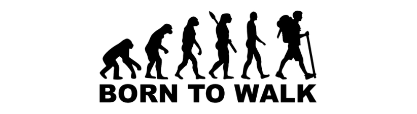 Evolution Hiking Born To Walk