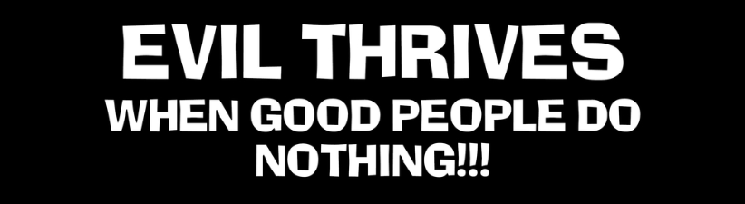 Evil Thrives When Good People Do Nothing 5