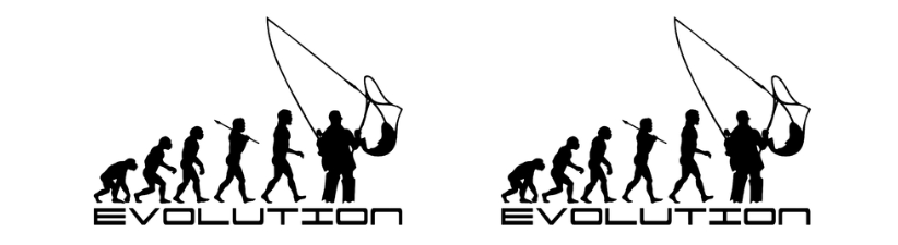 Fly Fisherman Evolution