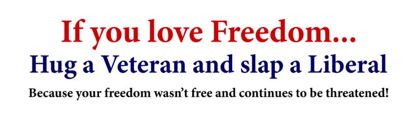 Hug A Vet Slap A Liberal