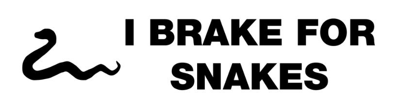 I Brake For Snakes