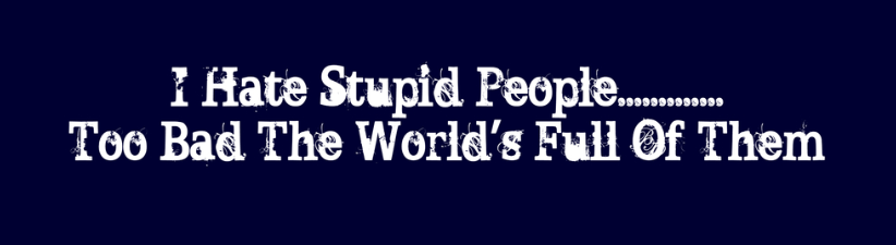 I Hate Stupid People Too Bad The Wo