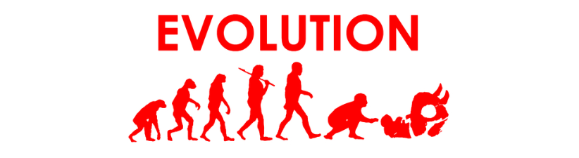 Jiu Jitsu Evolution