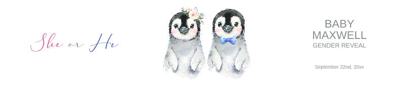 Gender Reveal Penguins