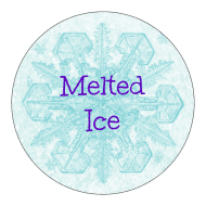 Celebration Sticker - Frozen Snowflake