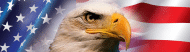 Bumper Sticker - American Flag With Bald Eagle