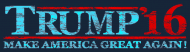 Bumper Sticker - Distressed Trump 2016 Make America Great Again