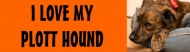 Bumper Sticker - Plott Hound