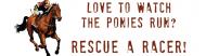 Bumper Sticker - Rescue Racing Horses