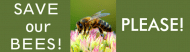 Bumper Sticker - Save Our Bees Please
