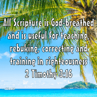 Sticker - 2 Timothy 3 All Scripture Is God Breathed