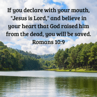 Sticker - Romans 10 If You Declare With Your Mouth