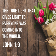 Sticker - John 1 The True Light That Gives Light