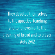 Sticker - Acts 2 They Devoted Themselves