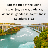 Sticker - Galatians 5 But The Fruit Of The Spirit Is Love