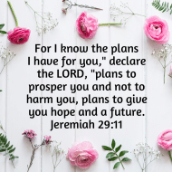 Sticker - Jeremiah 29 For I Know The Plans