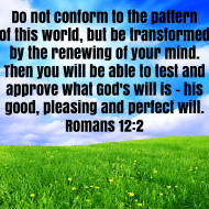 Sticker - Romans 12 Do Not Conform To The Pattern