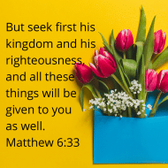 Sticker - Matthew 6 But Seek First His Kingdom
