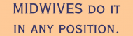 Bumper Sticker - Midwives Do It In Any Position