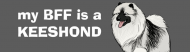 Bumper Sticker - My Bff Is A Keeshond